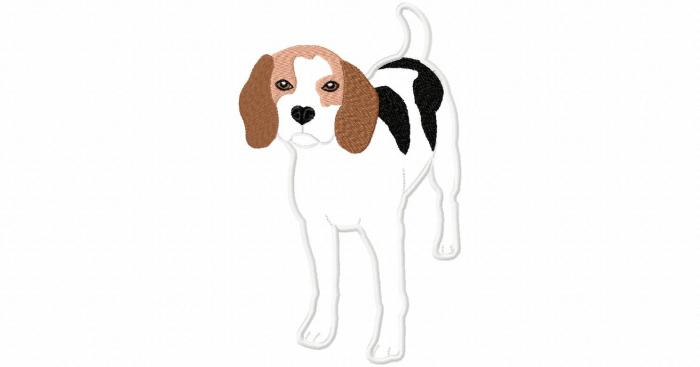 Stickdatei Beagle Applikation 13x18 / 17x20